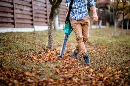 professional gardener using leaf blower and working in the garden