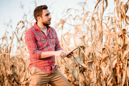 Portrait of handsome farmer using tablet for harvesting crops. Farming equipment and technology