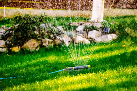Gardening details close up- automatic lawn watering system with pop-up sprinklers Stockfoto