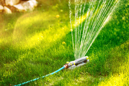 Close up details of automatic lawn circular sprinkler. Details of irrigation Stockfoto