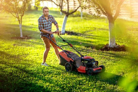 gardener mowing the lawn using a gasoline powered device, a professional lawn mower Stock Photo