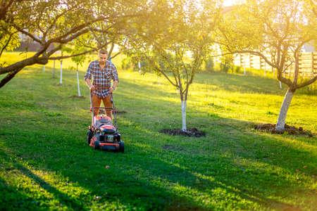 Gardening and garden maintainance, home gardener using lawnmower and cutting grass in garden