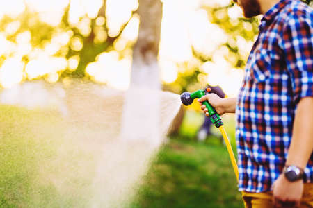 Close up of man hands watering backyard lawn using hose