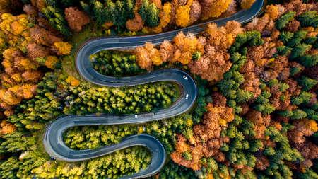 Perfekte Luftaufnahme der kurvenreichen Forststraße in den Bergen. Bunte Landschaft mit Landstraße, Bäume mit gelben Blättern.
