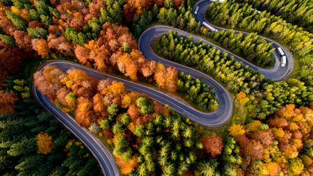 Aerial view of forest road in beautiful autumn  at sunset. Curved road in the mountains with truck traffic and nice landscape