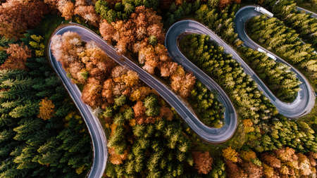 Aerial view of forest road in beautiful autumn  at sunset. Curved road in the mountains with truck traffic