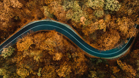 Aerial view of asphalt forest road,  winding road and colourful autumn foliage. Brown, yellow autumn colors