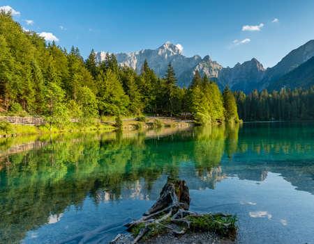 Árboles de montaña de los Alpes reflejados en un lago