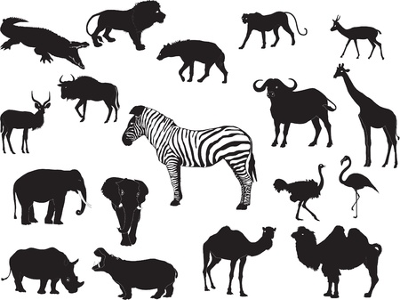 large group of animals: African animals collection