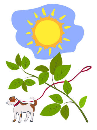 The sun, a dog on a leash, a branch with green leaves.