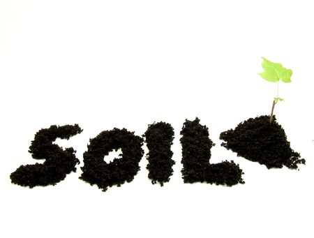 Soil text with plant