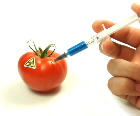 Injection of some substance into fresh red tomatoes