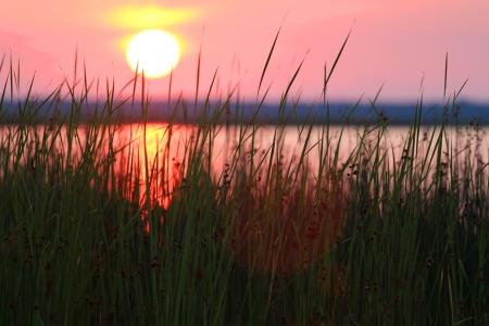 Sunset at the Lebsko Lake, Poland