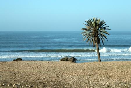 Big waves in a surfing beach, Tamri beach, Marocco, Africa