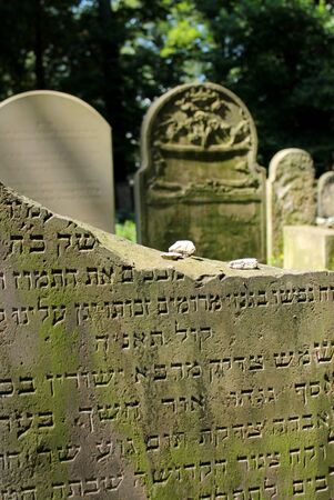 New Jewish Cementery, Kazimierz Krakow, Poland photo