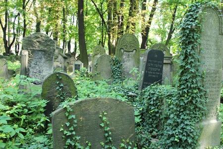 New Jewish Cementery, Kazimierz Krakow, Poland