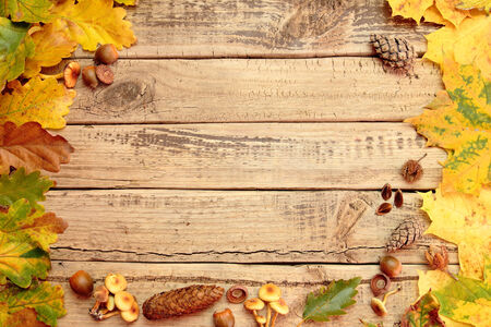 Autumn background with color leafs on wooden board photo
