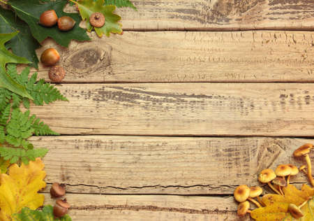 Autumn background with color leafes on wooden board photo