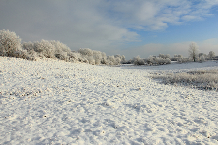 Cold winter with snowy field and blue sky Stock Photo