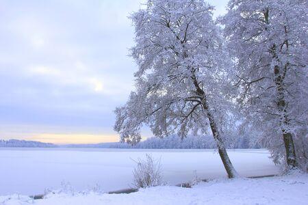 frozen lake: Winter landscape with frozen lake