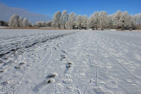 Traces on frozen lake, winter landscape