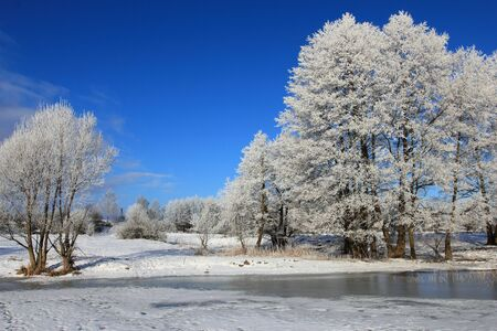 Frozen lake and frost on trees, winter landscape