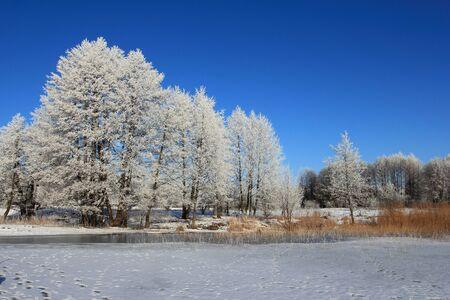 Winter landscape, Masurien region, Poland