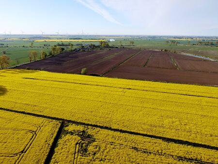 Farmland in Zulawy Wislane in spring season, Poland
