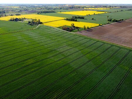 Aerial view on fields in spring, Zulawy Wislane, Poland