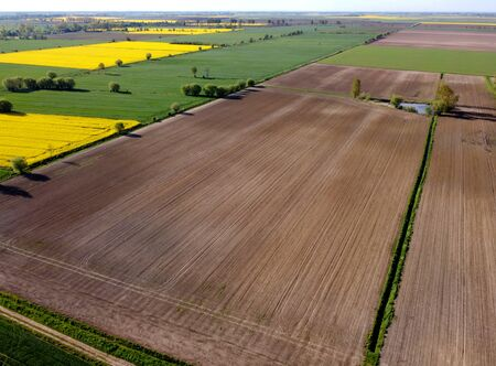 Agriculture lowland in spring, aerial view, Zulawy Wislane, Poland