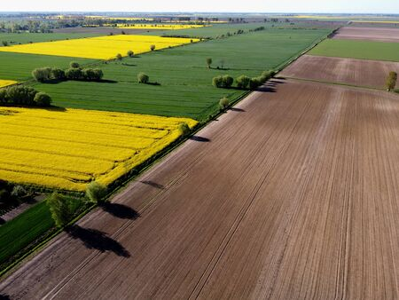 Zulawy Wislane seen from above in spring, Poland