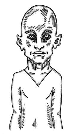 Elf Wizard Ilustrace