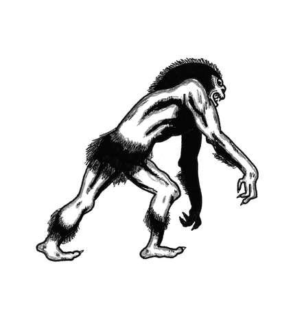Swamp Monster Çizim