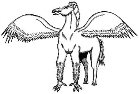 Hippogriff Ilustrace