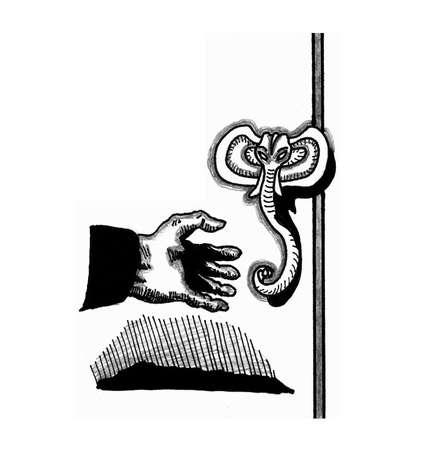 knocker: Door Handle