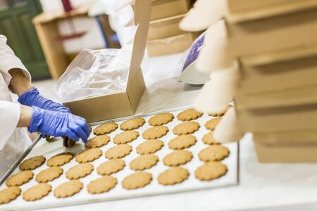 Cookies factory Stock Photo - 18829608