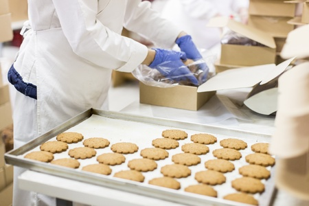 Cookies factory Stock Photo - 19898323