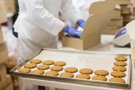 food hygiene: Cookies factory