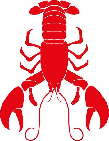 lobster: 새우