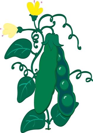 green peas: Green peas