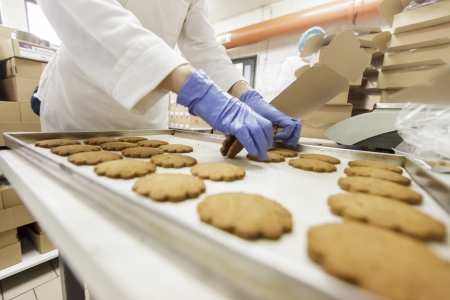Cookies factory photo