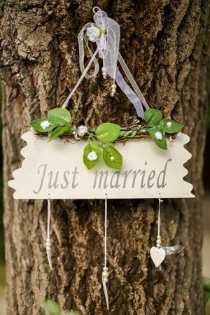recien casados: Recién casados Foto de archivo