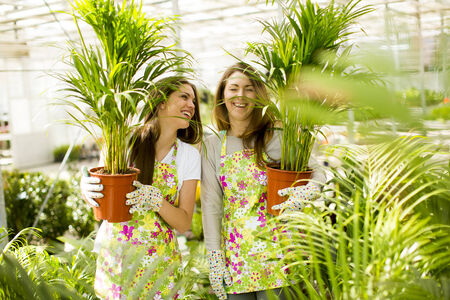 Young women in flower garden photo