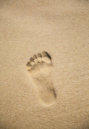 Footprint in the sand photo
