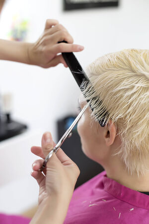 kapster: Jonge vrouw aan kapper Stockfoto