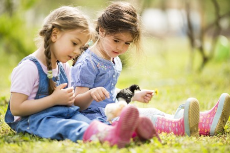 Two little girls with chickens photo