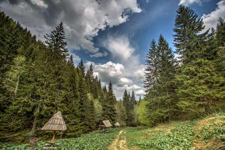 serbia: Kopaonik mountain in Serbia Stock Photo
