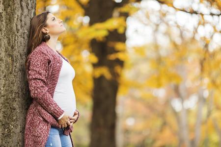 pretty woman: Joven mujer embarazada en el parque oto�o