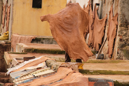 hides: FES, MOROCCO - DECEMBER 12, 2014: Unidentified man working at tannery in Fes, Morocco. This is the oldest leather tannery in the world and has not changed since the 11th century.