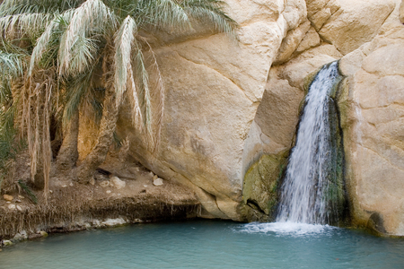 mountain oasis: Waterfall in mountain oasis Chebika, Tunisia